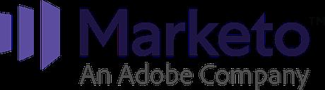 marketo email automation platform
