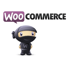 WooCommerce Ecommerce Plugin Review
