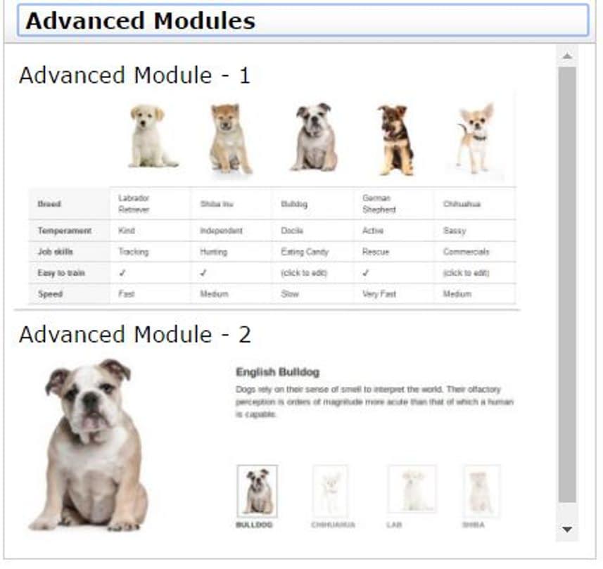 image guidelines amazon