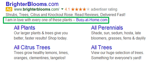 AdWords Extensions Guide Review Example