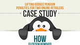 Lifting Google PENGUIN Penalties for Two Online Retailers