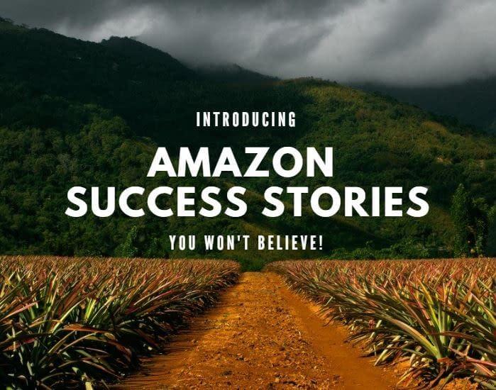 amazon seller success