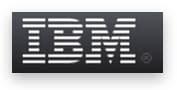 Product information management IBM InfoSphere Platform