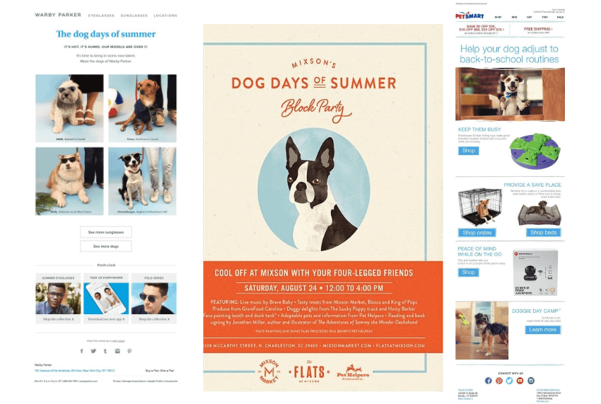 dog days of summer email promotion