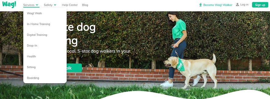 wag dog walking